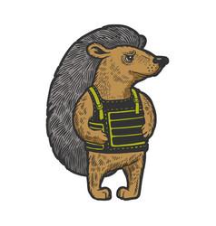 hedgehog in body armor color sketch engraving vector image
