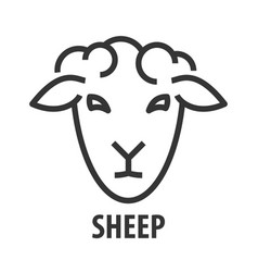 line icon sheep vector image