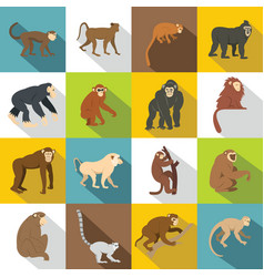 monkey types icons set flat style vector image