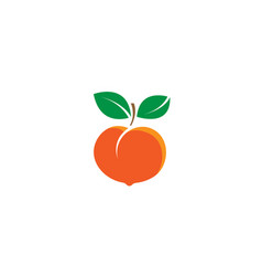 peach fruit seed logo vector image