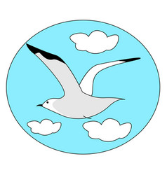 seagull flying in sky on white background vector image