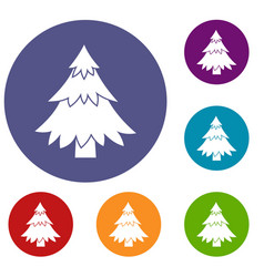 coniferous tree icons set vector image vector image