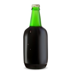 Green bottle of dark beer vector image vector image