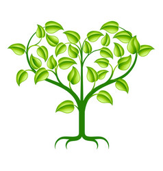 green heart tree vector image