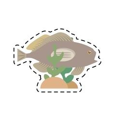 grouper fish side view sea life coral vector image