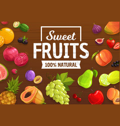 Berries and fruits farm market harvest vector