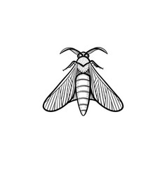 Locust hand drawn sketch icon vector