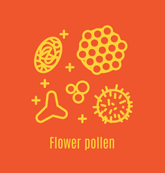 Pollen a product of bees and beekeeping vector