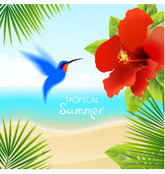 Tropical background with hummingbird vector