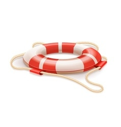 Life buoy for drowning rescue vector image