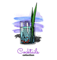 hand drawn cocktail and watercolor vector image