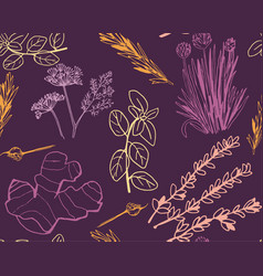 Herbs and medicinal plants seamless pattern vector
