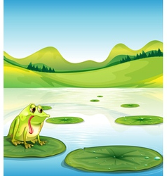 A hungry frog above the waterlily vector image