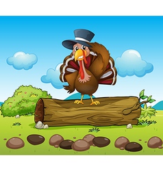 A turkey above a log vector image vector image