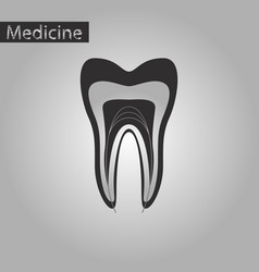 black and white style icon of tooth vector image
