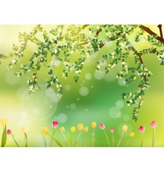 Colorful tulips in the park EPS 10 vector image