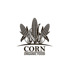 corn vegetable emblem vector image
