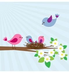 family birds vector image