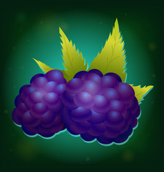 forest blackberry with leaves vector image