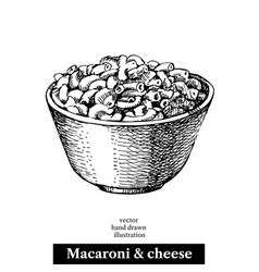 hand drawn sketch homemade macaroni and cheese in vector image