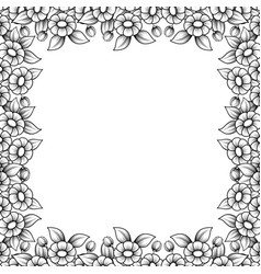 square daisy outline frame vector image