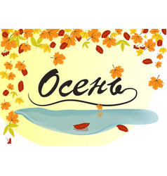 text autumn on a background of leaves vector image