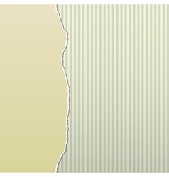 Beige Torn Paper on Stripes Side vector image
