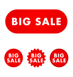 big sale button vector image