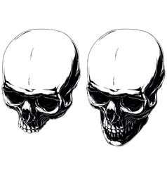 Cool graphic detailed human skulls set vector image