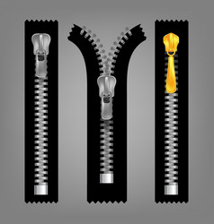 Different open and closed zippers cloth set vector