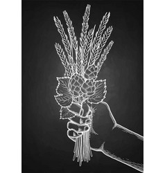 graphic hand with malt bunch vector image