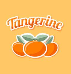 retro tangerine on pale orange background vector image
