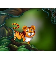 A rainforest with a tiger vector image
