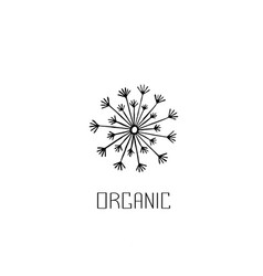 abstract graphic doodle dandelion decorative vector image