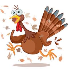 Funny turkey running cartoon vector