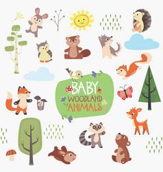 Baby woodland animals design set vector
