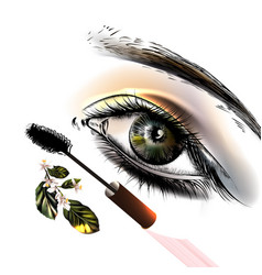 Fashion background with beautiful female eye vector