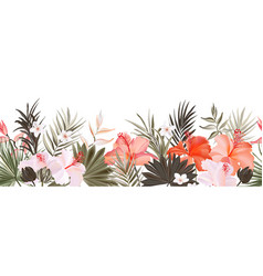 hibiscus botanic seamless horizontal border vector image