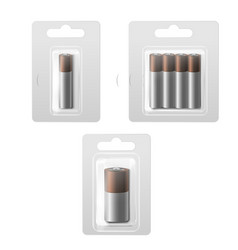realistic detailed 3d batteries in blister set vector image