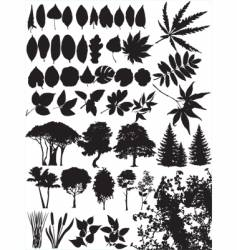 Trees grass leaf plant vector
