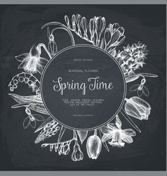 design with hand drawn spring flowers vector image