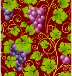 grape pattern vector image