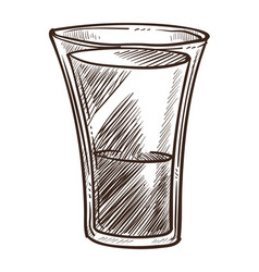 alcohol drink vodka in glass tequila or sambuca vector image