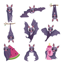 collection of funny purple bats cute creature vector image