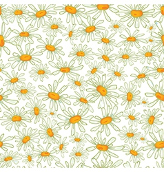 Flower camomile seamless pattern background vector