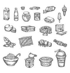 hand drawn dairy elements milk cheese butter and vector image