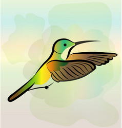 hummingbird flying vector image
