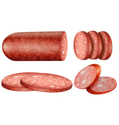 Salami slices on white background vector