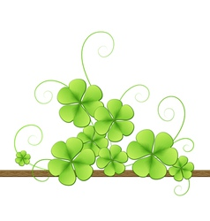 Clover leaves background vector image vector image