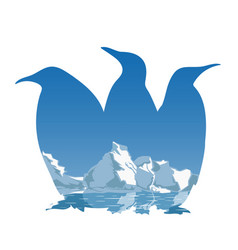 three penguins silhouette concept vector image
